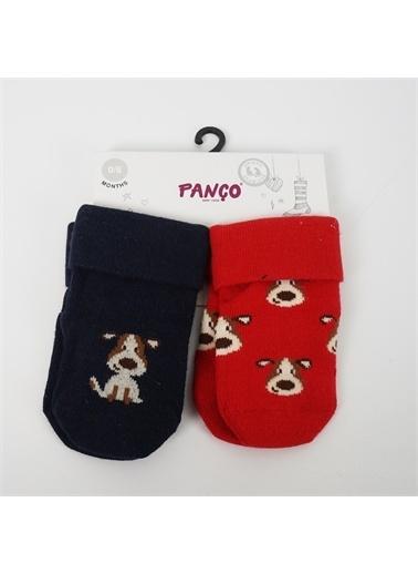 Panço Erkek Bebek 2 li Çorap 18236006108 Renksiz